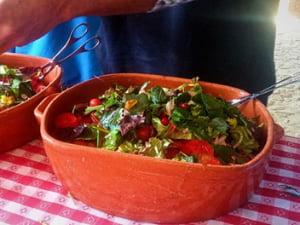 Salada bio de ervas silvestres