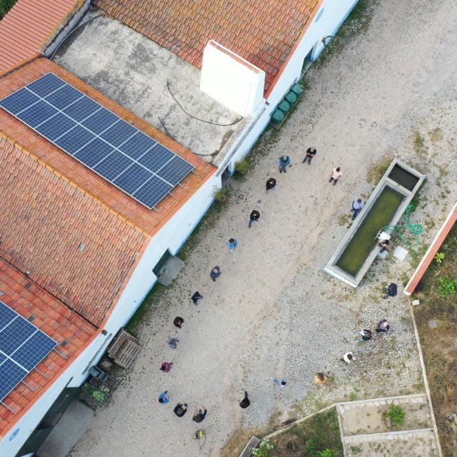 Imagem aérea de pessoas em circulo